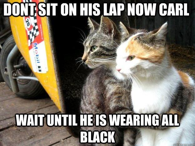 Cat Logic 4
