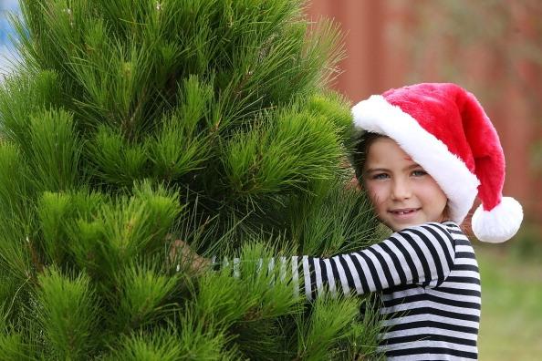 Christmas decorating hacks