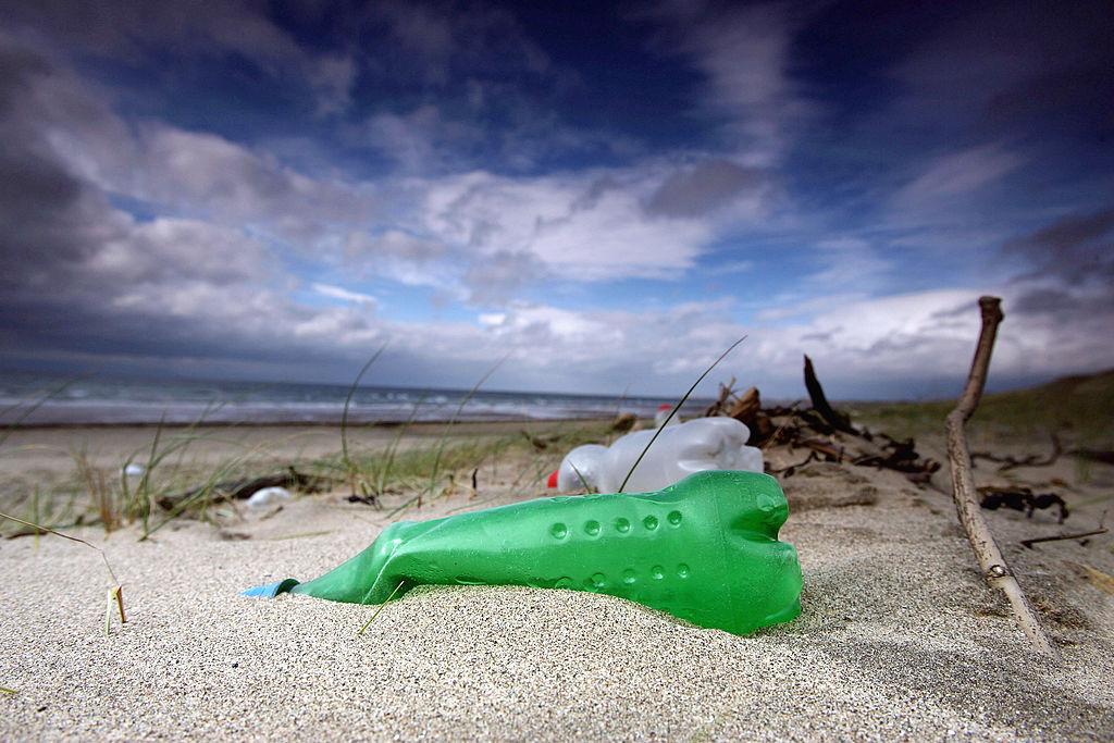 plastic bottle litter