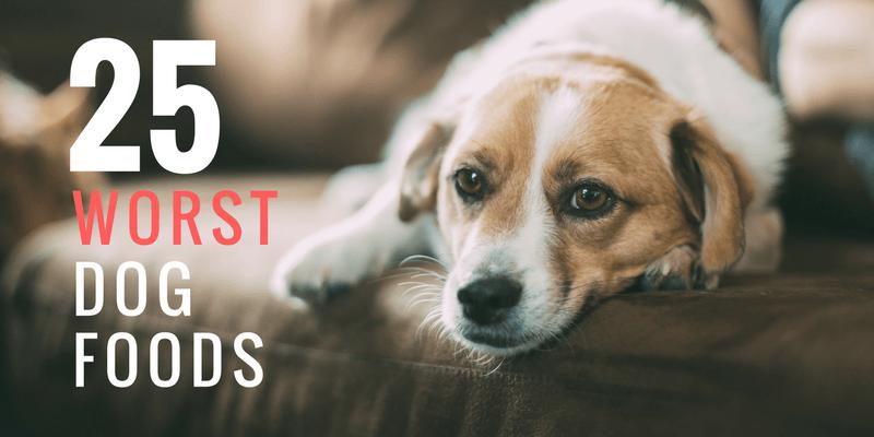 25 Worst Dog Foods
